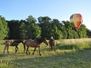 vol-montgolfiere-esclimont-4-110528