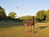 vol-montgolfiere-esclimont-5-110528