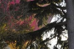 20170121 AIR PEGASUS MONTGOLFIERE 2